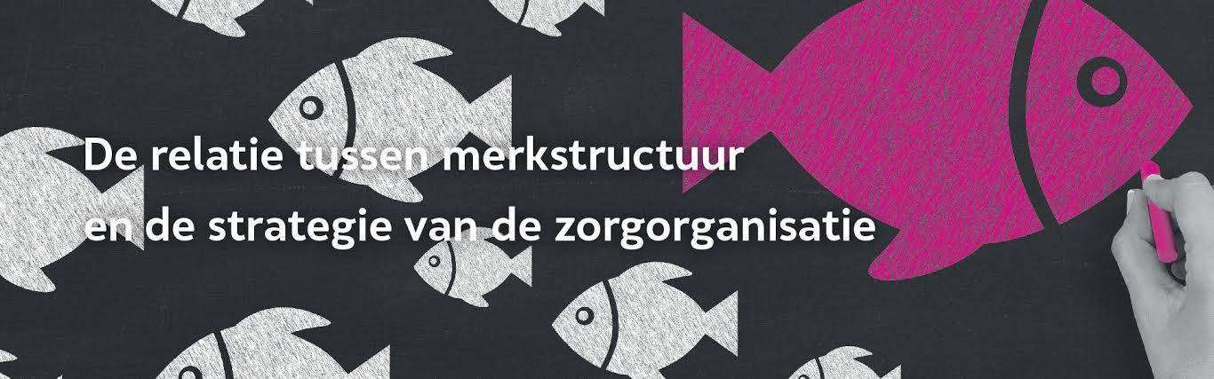 De relatie tussen merkstructuur en de strategie van zorgorganisaties